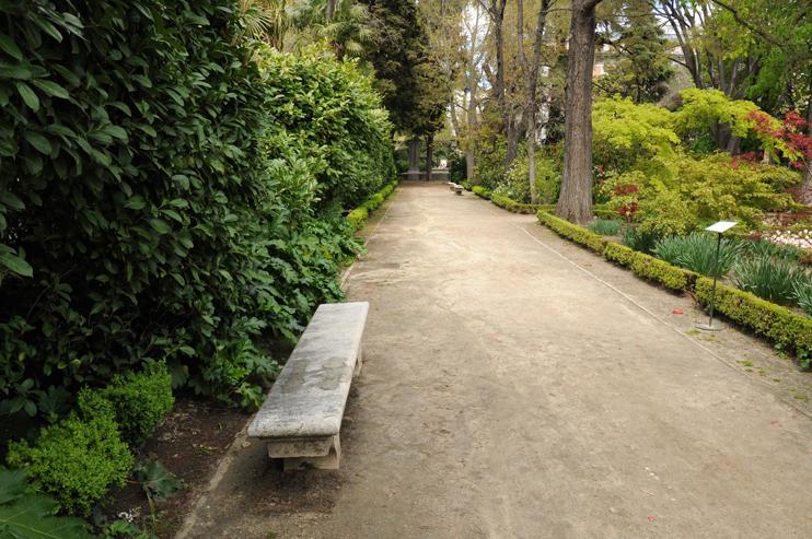 estudio-obras-ajardinamiento-cerramiento-historico-jardin-botanico-paseo